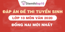 Đề thi tuyển sinh lớp 10 môn Văn 2020 tỉnh Đồng Nai có lời giải